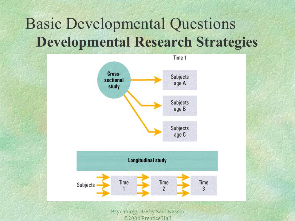 Basic Developmental Questions Developmental Research Strategies