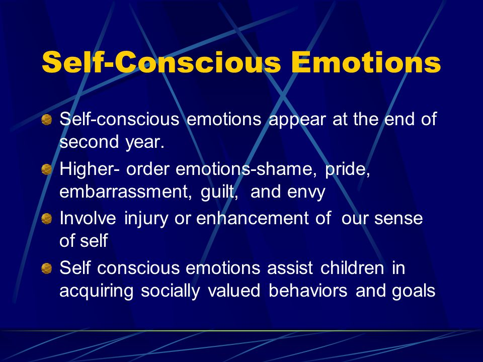 Self-Conscious Emotions