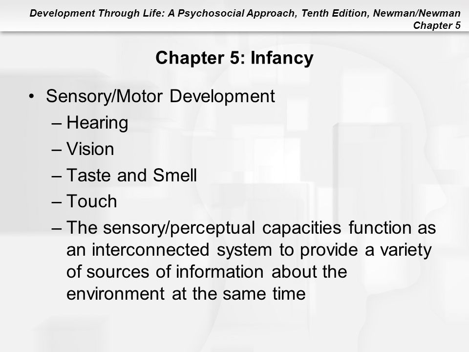 Sensory/Motor Development Hearing Vision Taste and Smell Touch