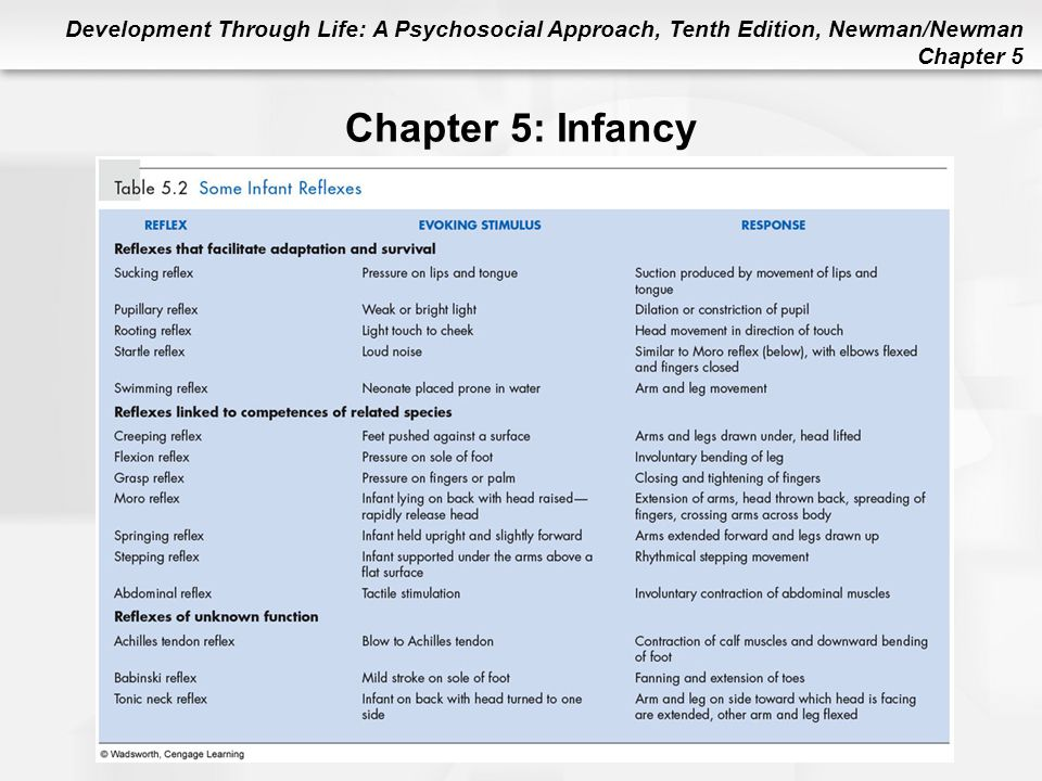Chapter 5: Infancy Table 5.2 Some Infant Reflexes