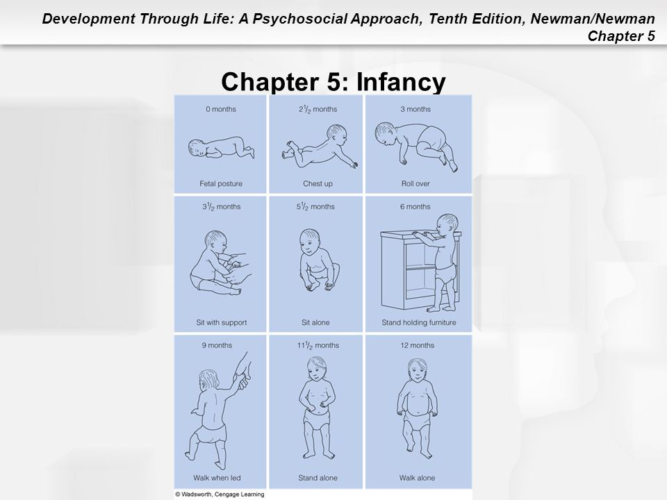 Chapter 5: Infancy Figure 5.4 A Typical Sequence of Motor Development and Locomotion in Infancy