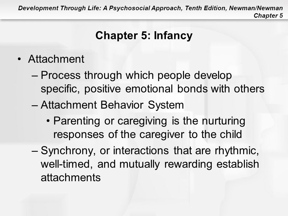 Attachment Behavior System