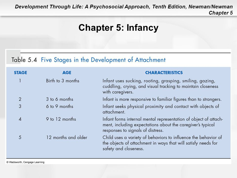 Chapter 5: Infancy Table 5.4 Five Stages in the Development of Attachment