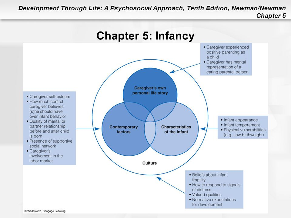 Chapter 5: Infancy Figure 5.5 Factors Contributing to Caregiver Sensitivity
