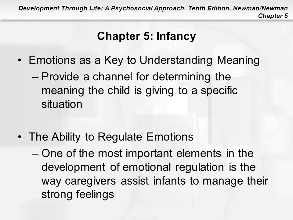 Emotions as a Key to Understanding Meaning