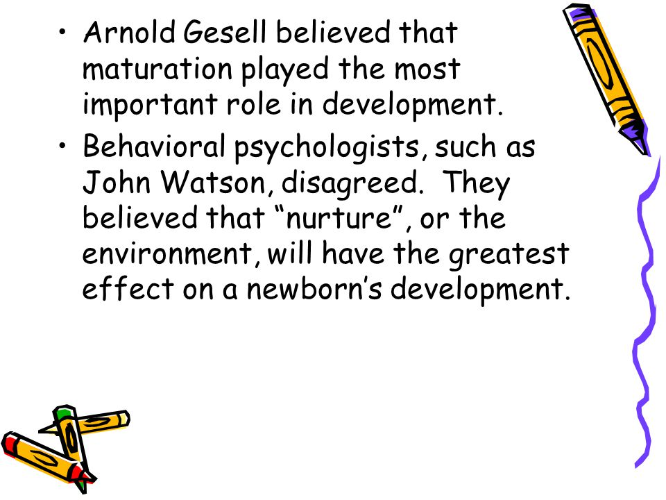 Arnold Gesell believed that maturation played the most important role in development.