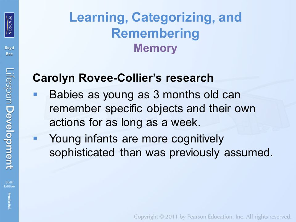 Learning, Categorizing, and Remembering Memory