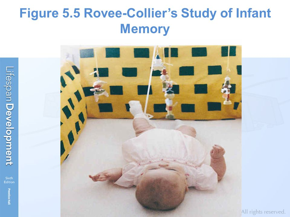Figure 5.5 Rovee-Collier's Study of Infant Memory