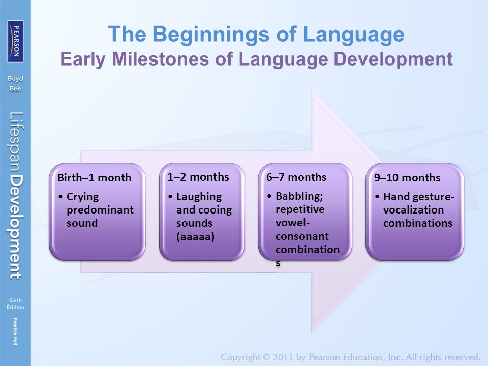 The Beginnings of Language Early Milestones of Language Development