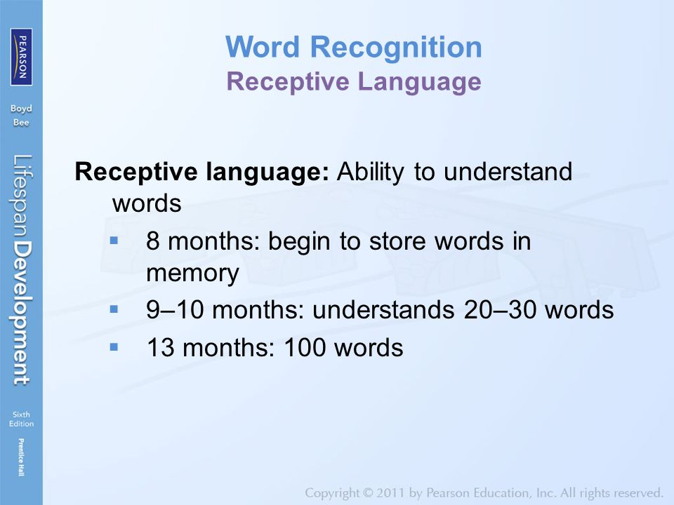 Word Recognition Receptive Language