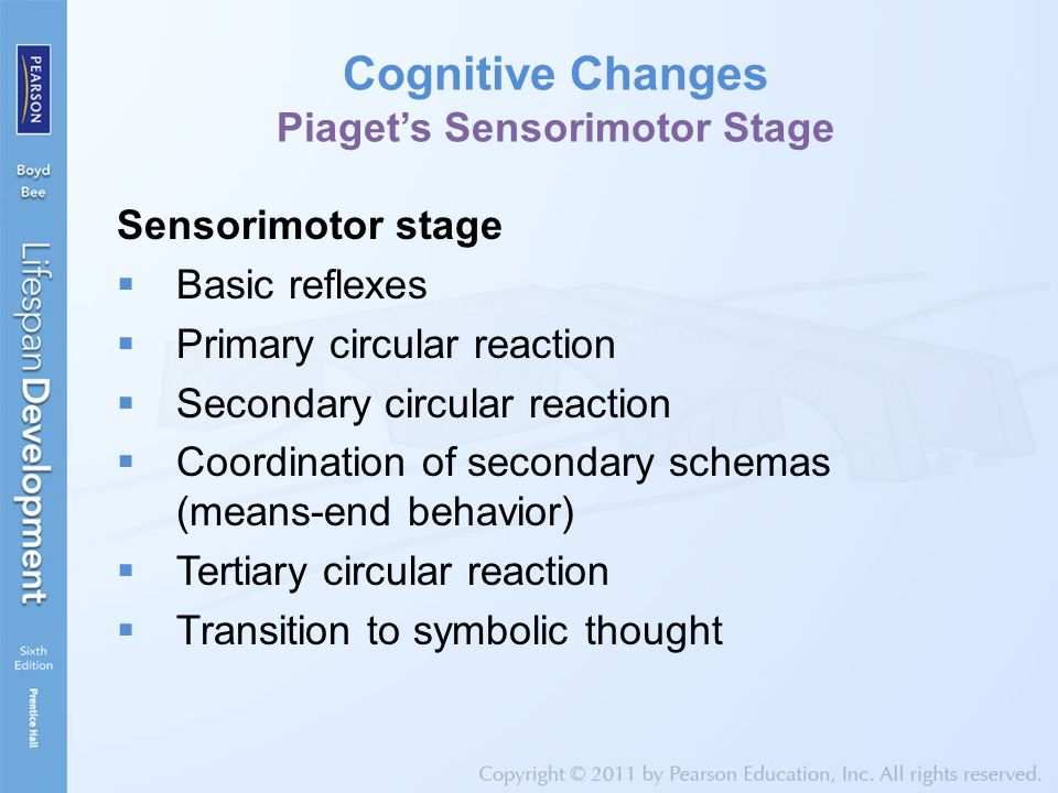 Cognitive Changes Piaget's Sensorimotor Stage