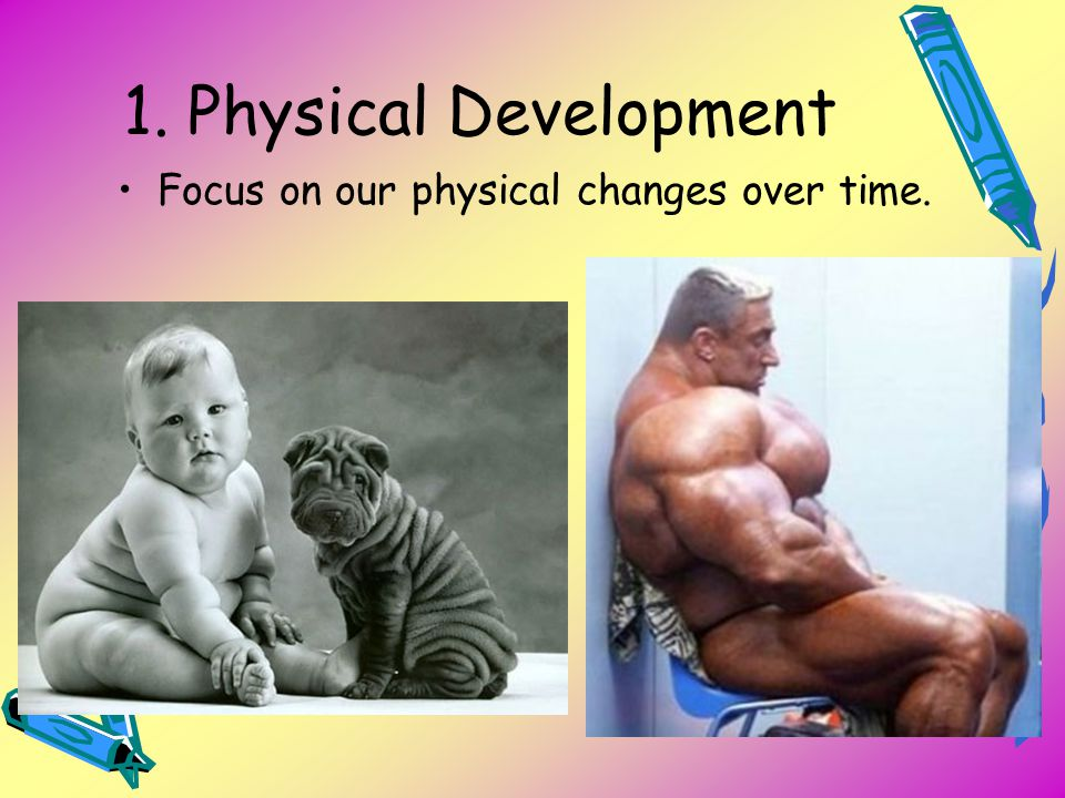 1. Physical Development Focus on our physical changes over time.
