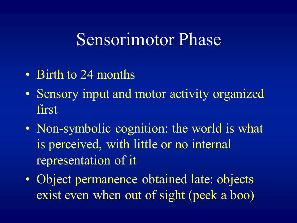 Sensorimotor Phase Birth to 24 months