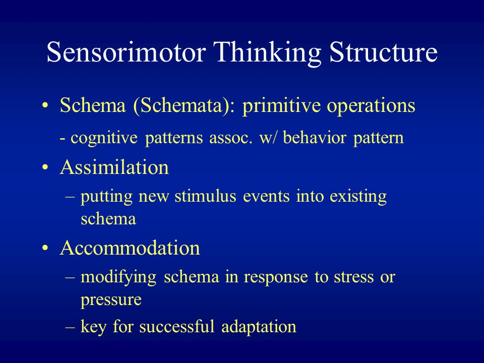 Sensorimotor Thinking Structure