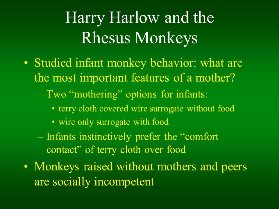 Harry Harlow and the Rhesus Monkeys