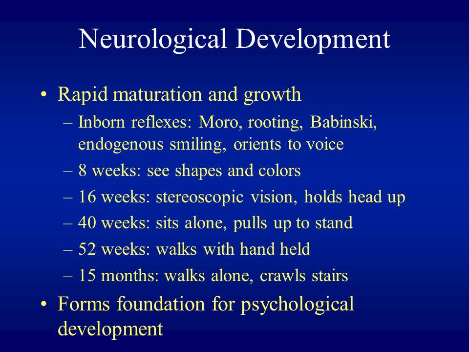Neurological Development
