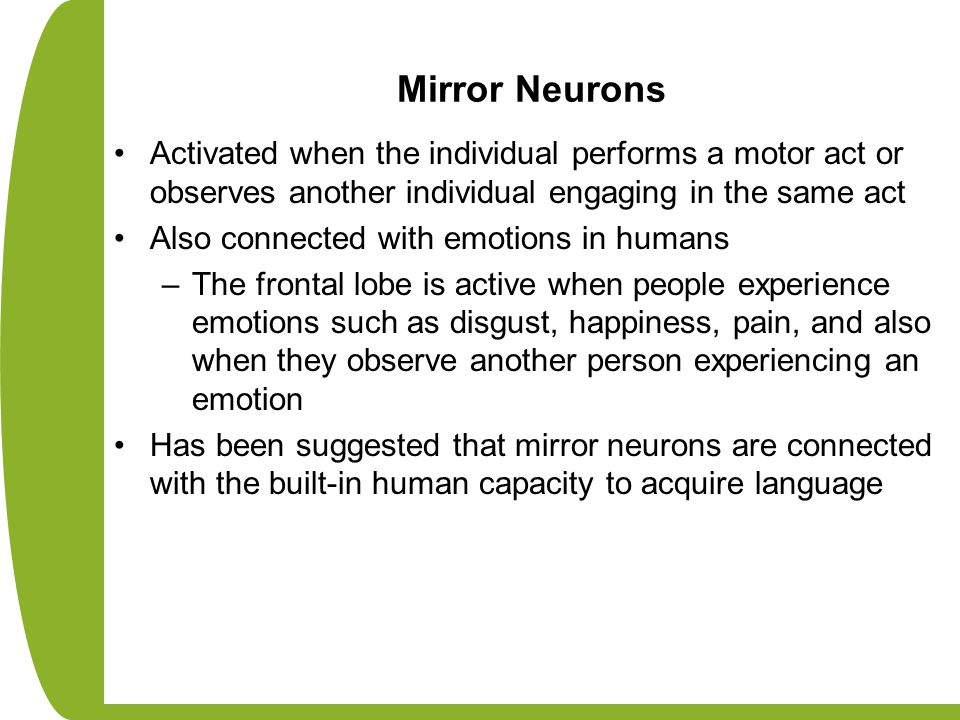Mirror Neurons Activated when the individual performs a motor act or observes another individual engaging in the same act.