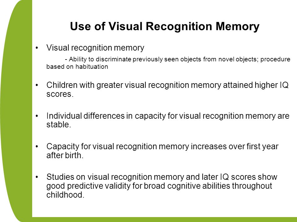Use of Visual Recognition Memory