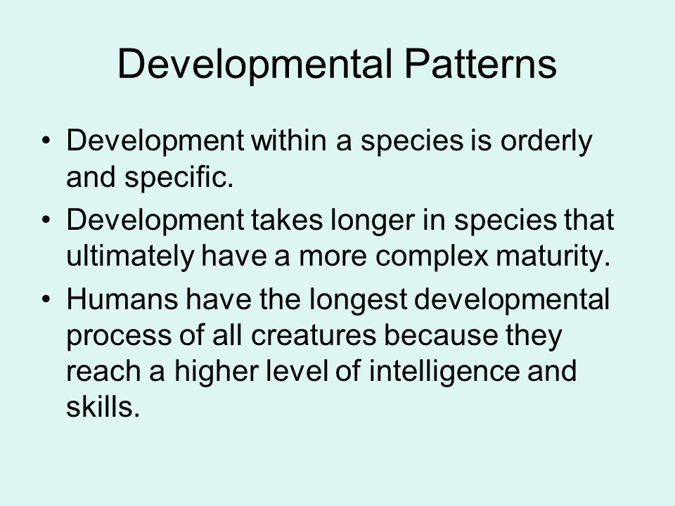 Developmental Patterns