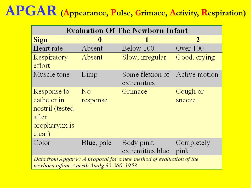 APGAR (Appearance, Pulse, Grimace, Activity, Respiration)