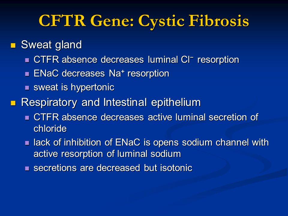 CFTR Gene: Cystic Fibrosis