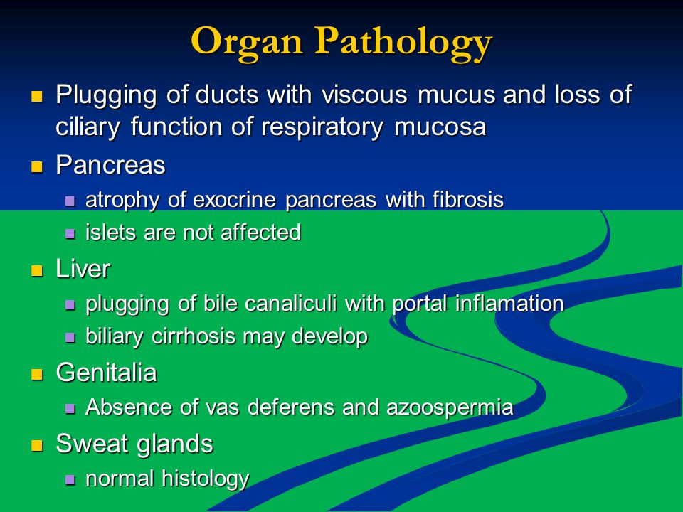 Organ Pathology Plugging of ducts with viscous mucus and loss of ciliary function of respiratory mucosa.