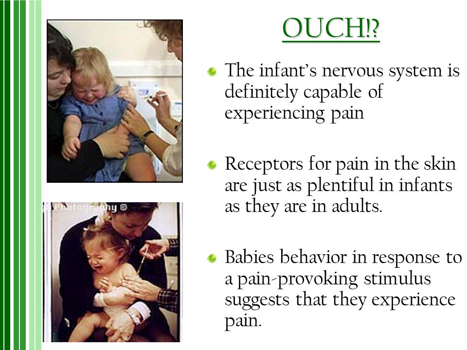 OUCH! The infant's nervous system is definitely capable of experiencing pain.