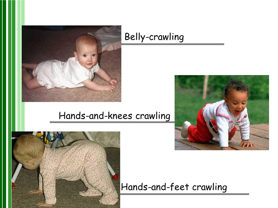 Belly-crawling Hands-and-knees crawling Hands-and-feet crawling