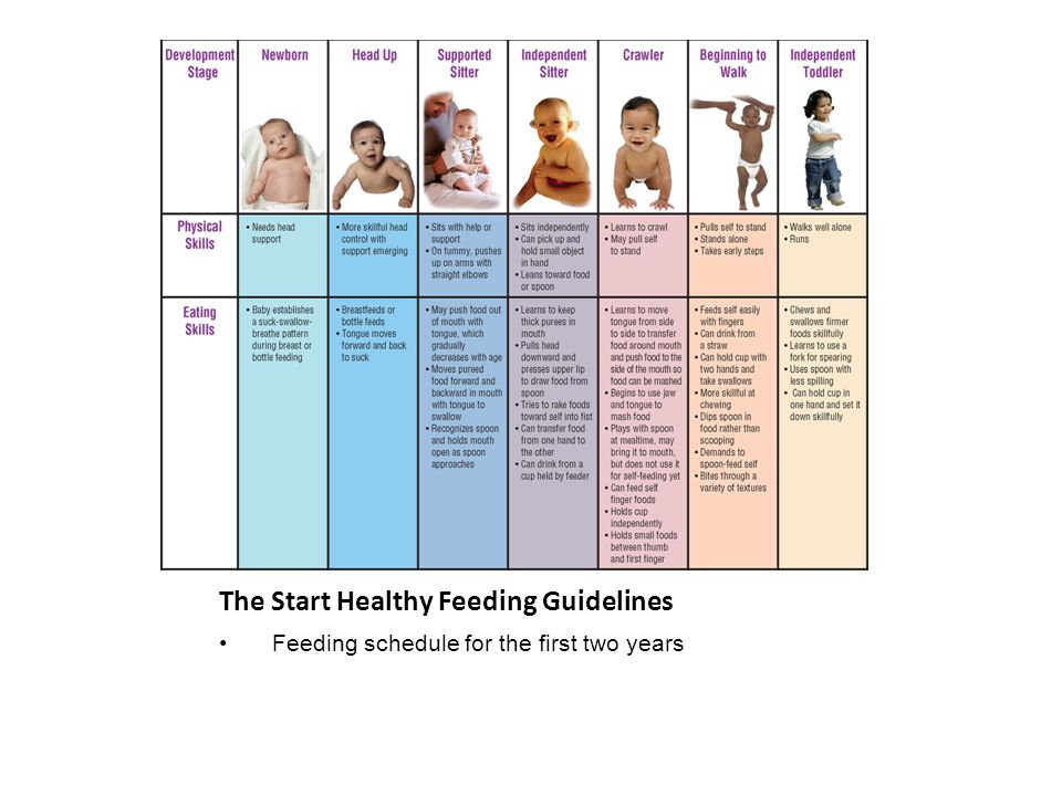 The Start Healthy Feeding Guidelines