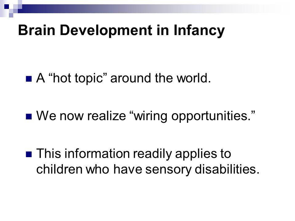 Brain Development in Infancy