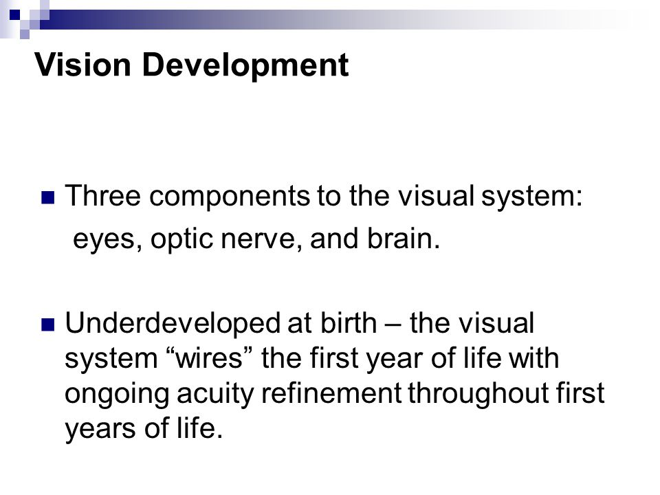 Vision Development Three components to the visual system: