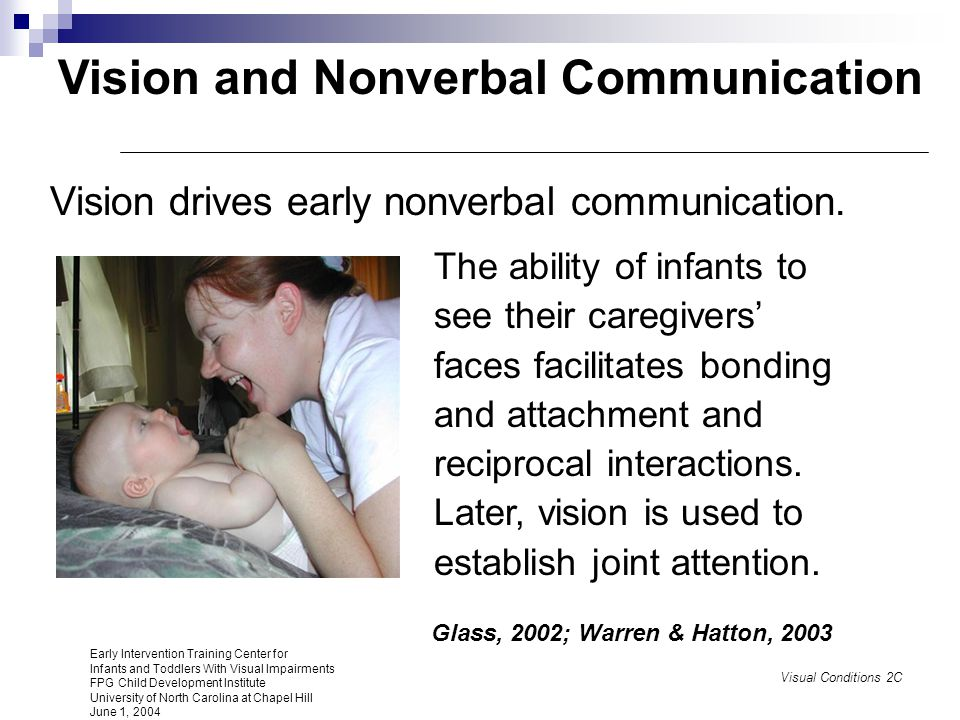 Vision and Nonverbal Communication