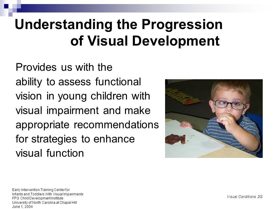 Understanding the Progression of Visual Development