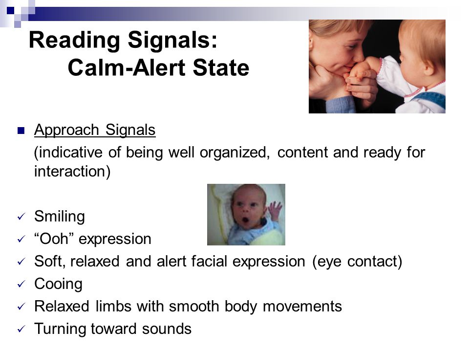 Reading Signals: Calm-Alert State