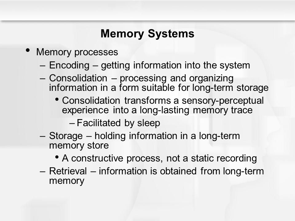 Memory Systems Memory processes