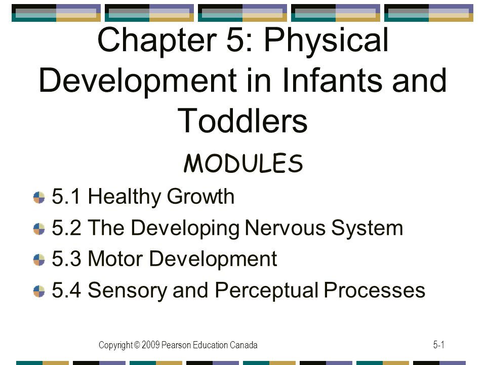 Chapter 5: Physical Development in Infants and Toddlers