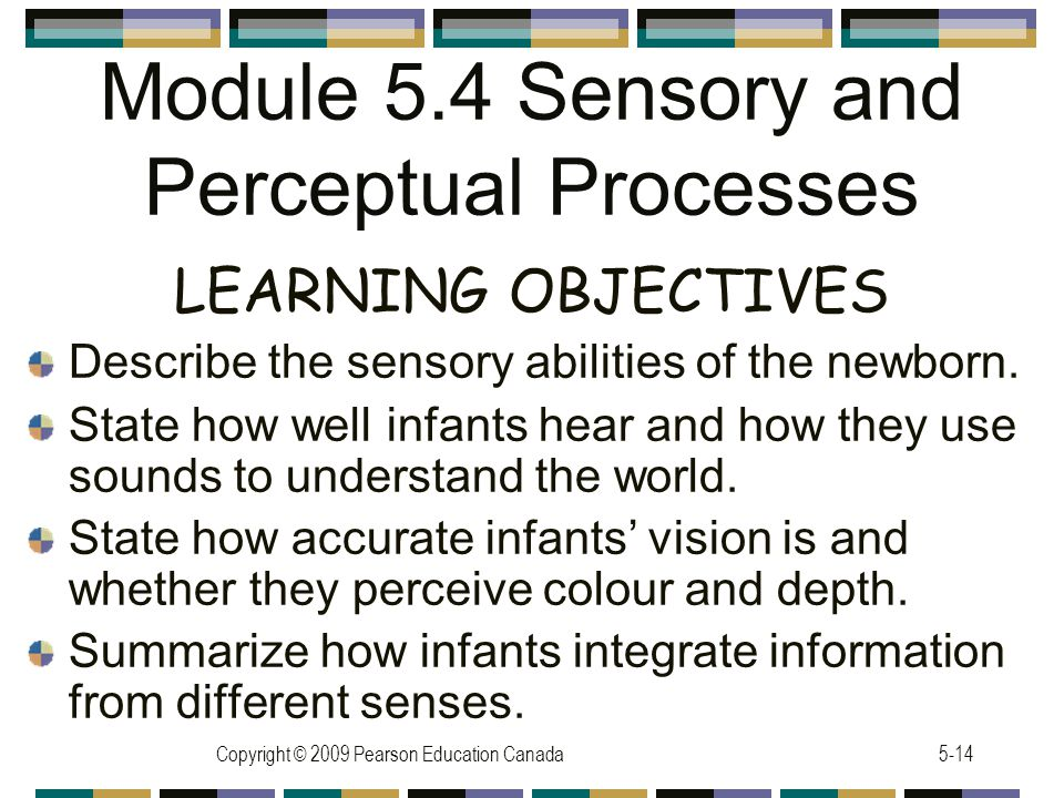 Module 5.4 Sensory and Perceptual Processes