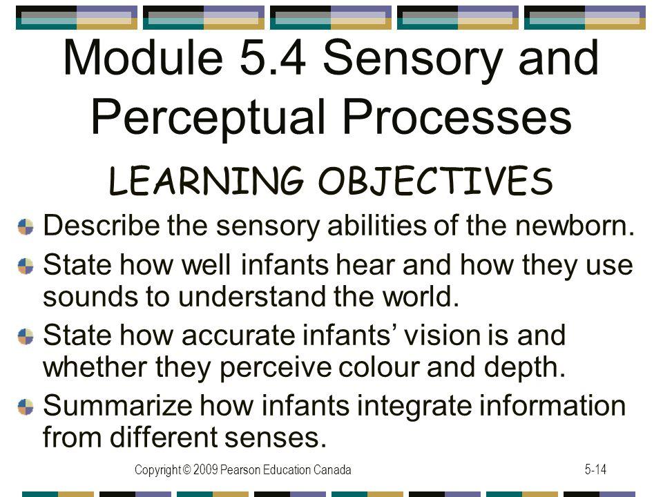 Module 5.4 Sensory and Perceptual Processes