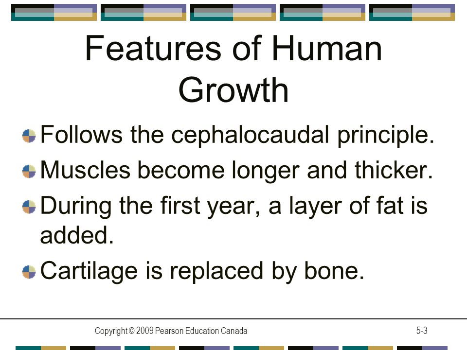 Features of Human Growth