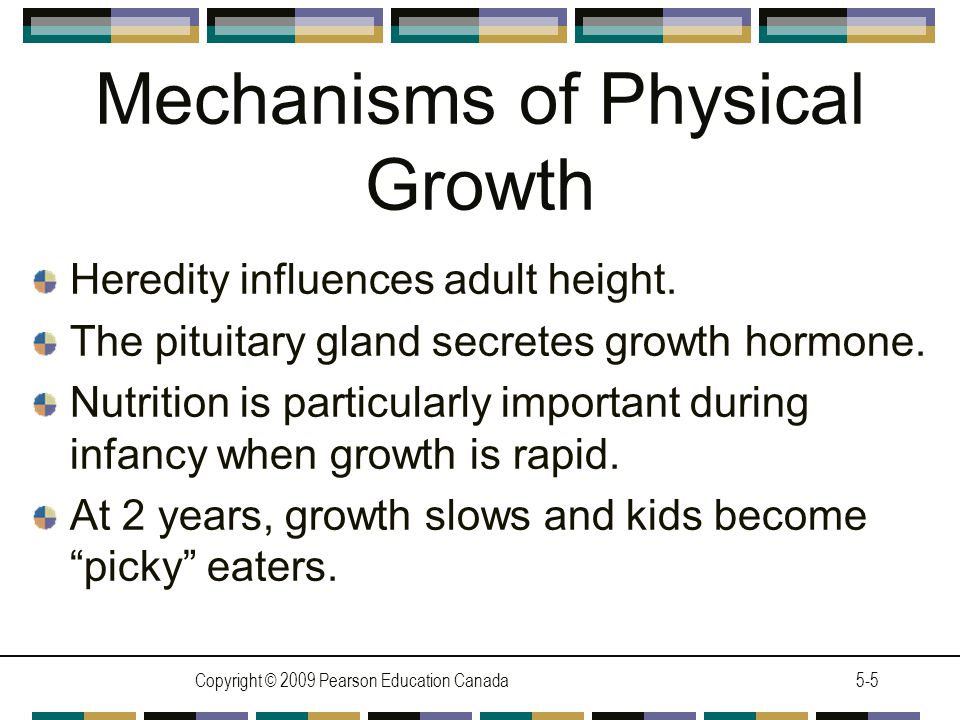 Mechanisms of Physical Growth