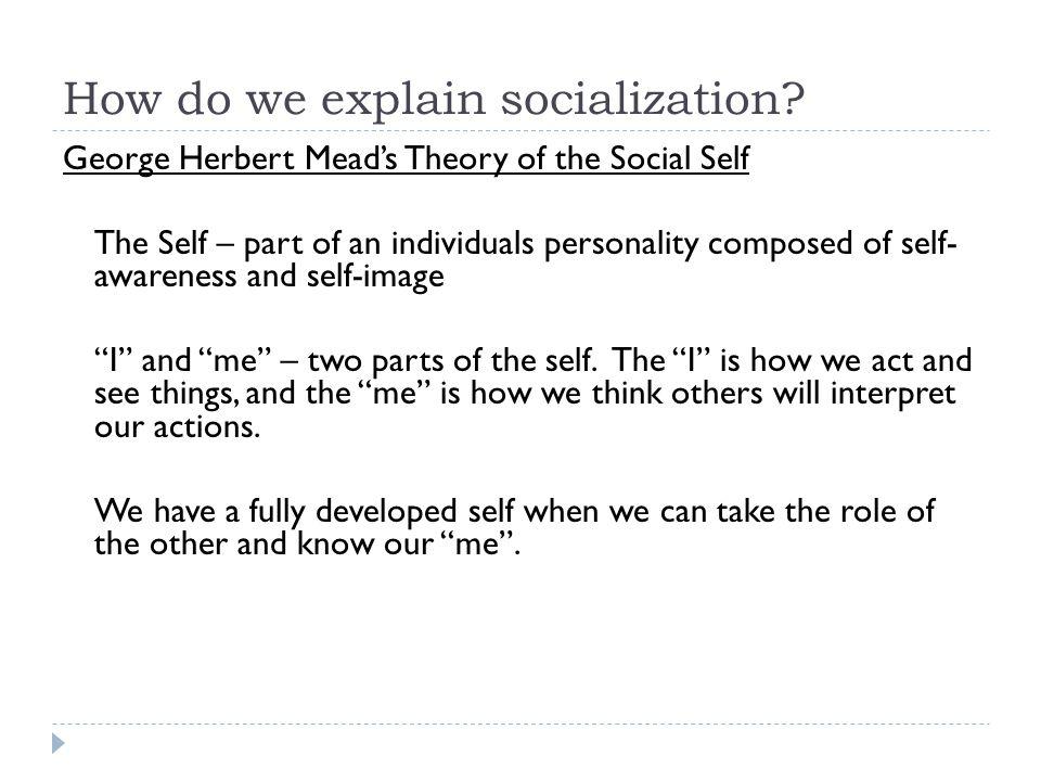 How do we explain socialization