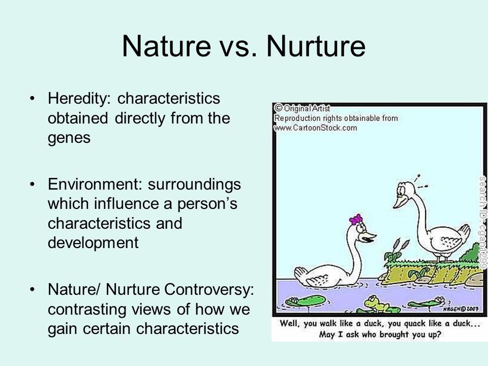 nature vs nurture in child development essay Nature vs nurture essay examples of the differences between girls and boys in the nature versus nurture debate on factors influencing child development.