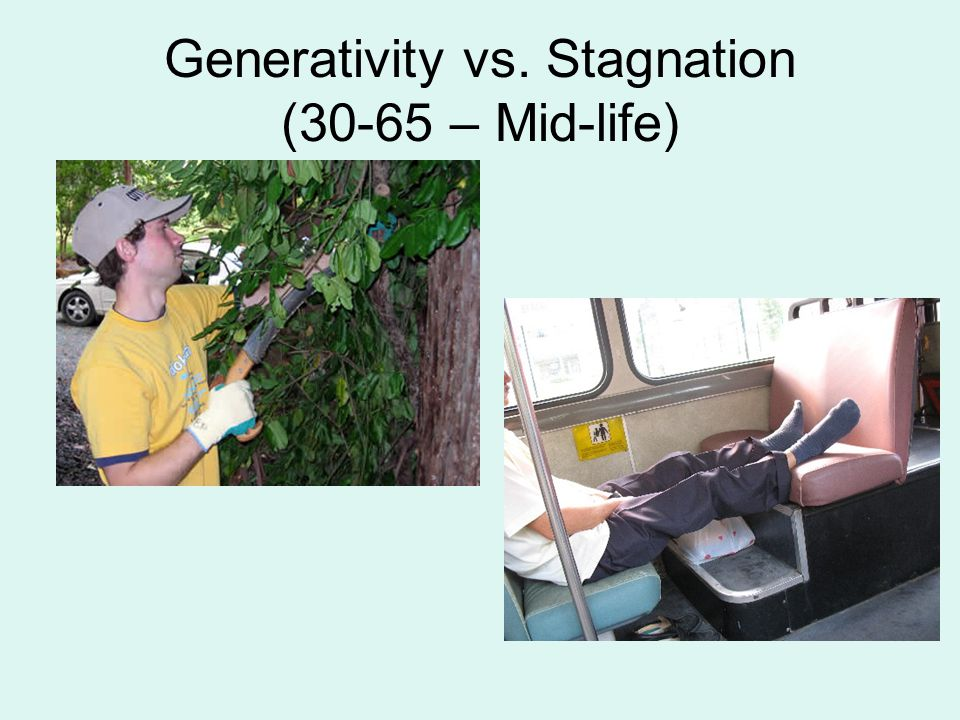 Generativity vs. Stagnation (30-65 – Mid-life)