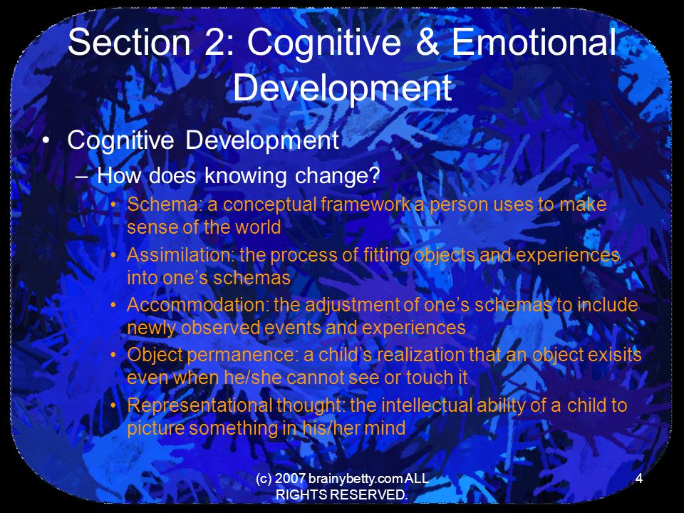 Section 2: Cognitive & Emotional Development