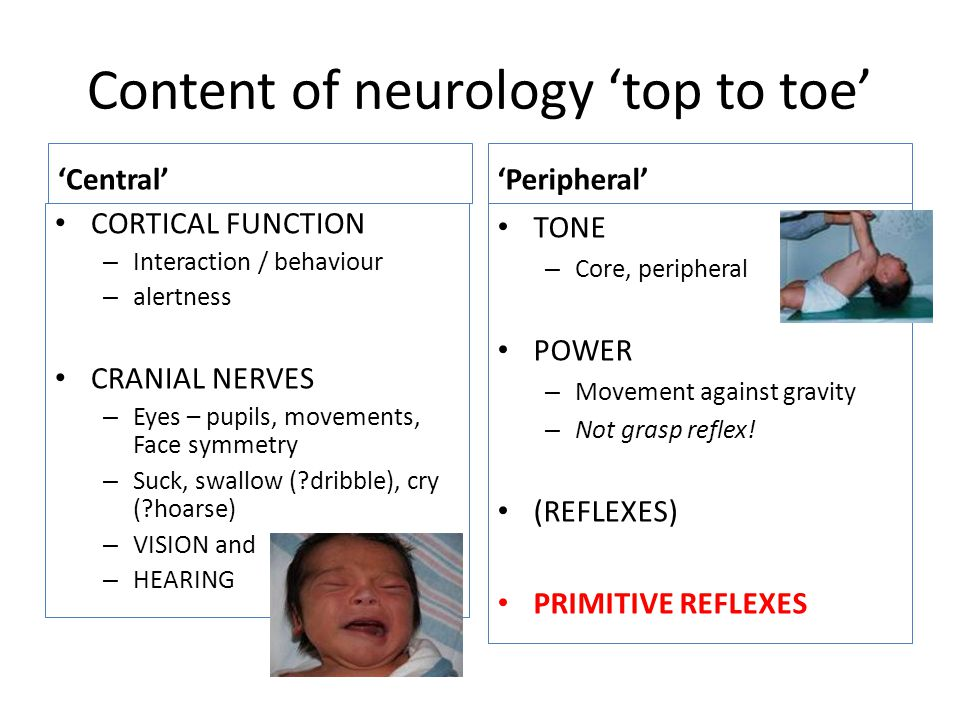 Content of neurology 'top to toe'