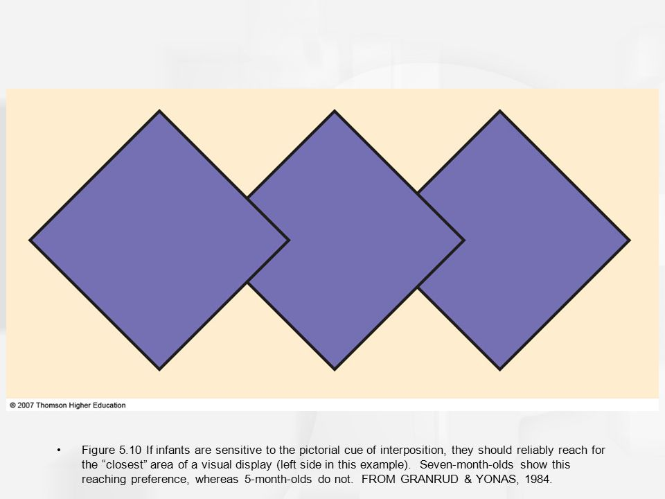 Figure 5.10 If infants are sensitive to the pictorial cue of interposition, they should reliably reach for the closest area of a visual display (left side in this example).