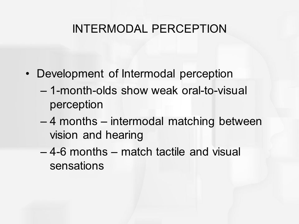INTERMODAL PERCEPTION
