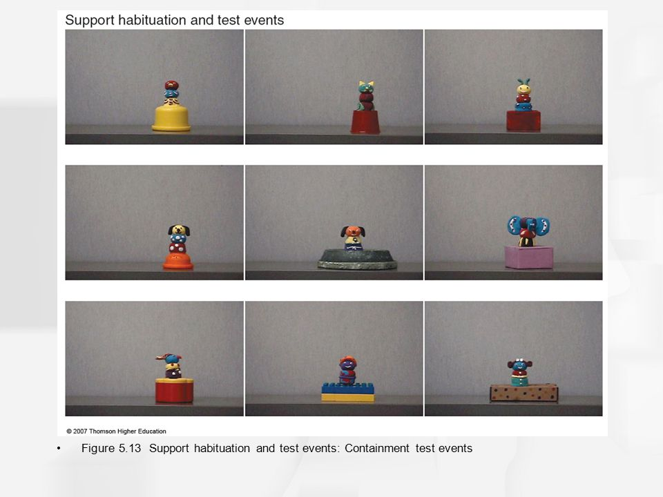 Figure 5.13 Support habituation and test events: Containment test events