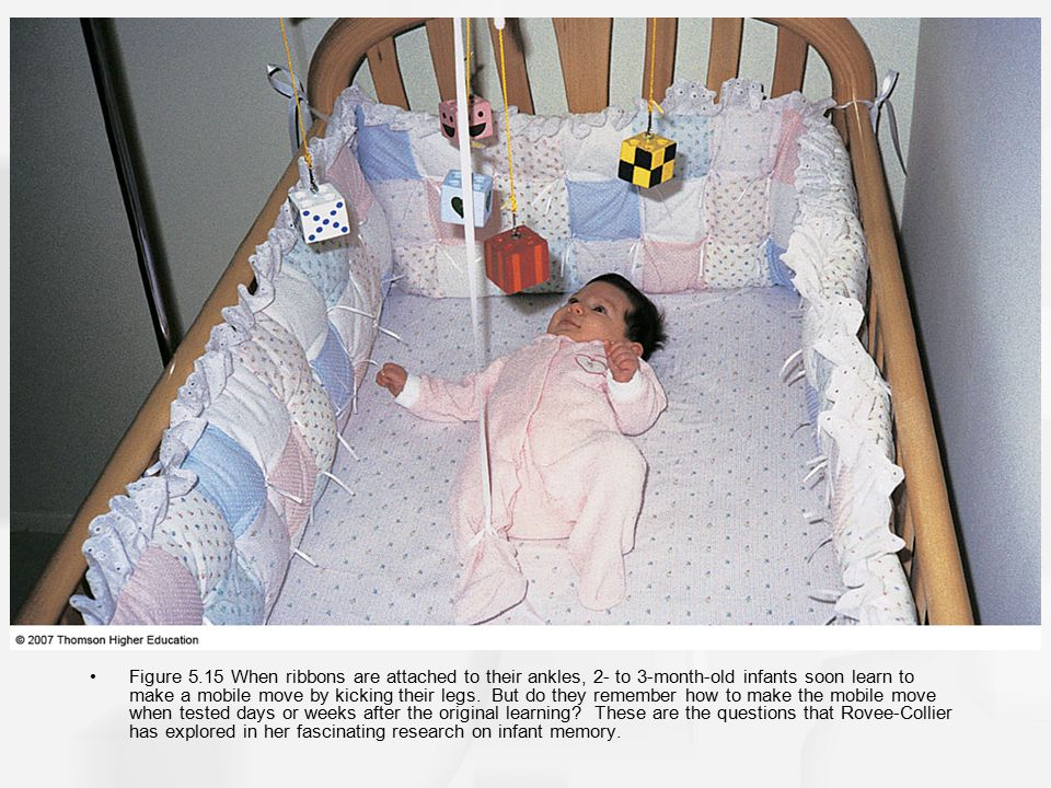 Figure 5.15 When ribbons are attached to their ankles, 2- to 3-month-old infants soon learn to make a mobile move by kicking their legs.