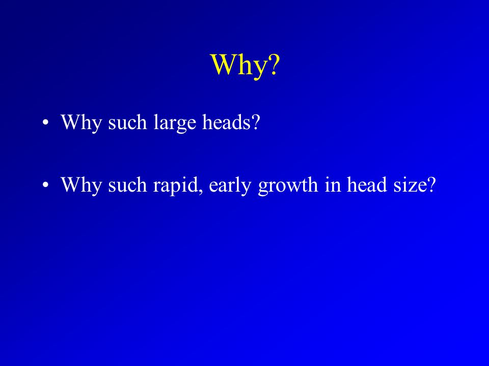 Why Why such large heads Why such rapid, early growth in head size